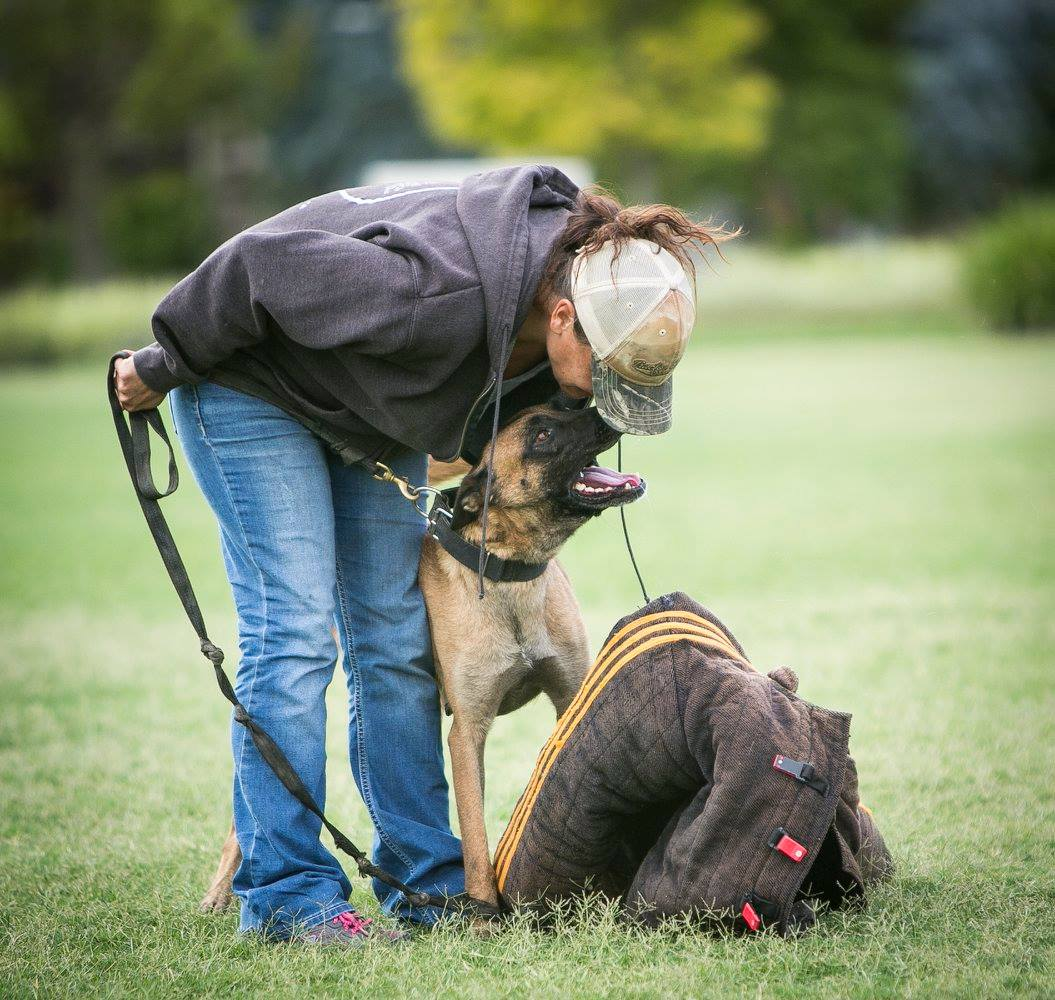 Don't Be A Dog Person – An Open Letter to Dog Trainers