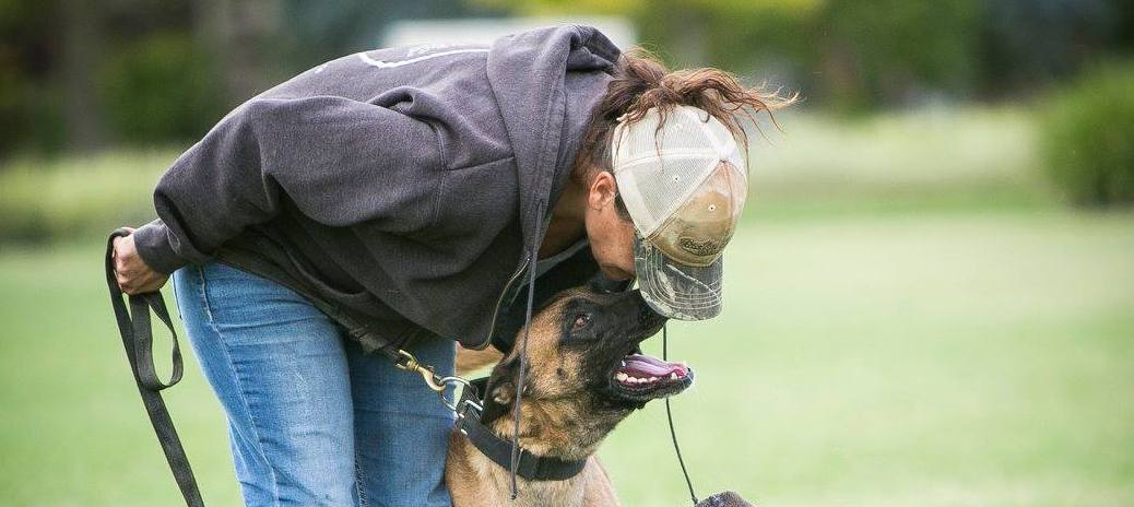 You Get What You Give: The importance of being consistent in dog training