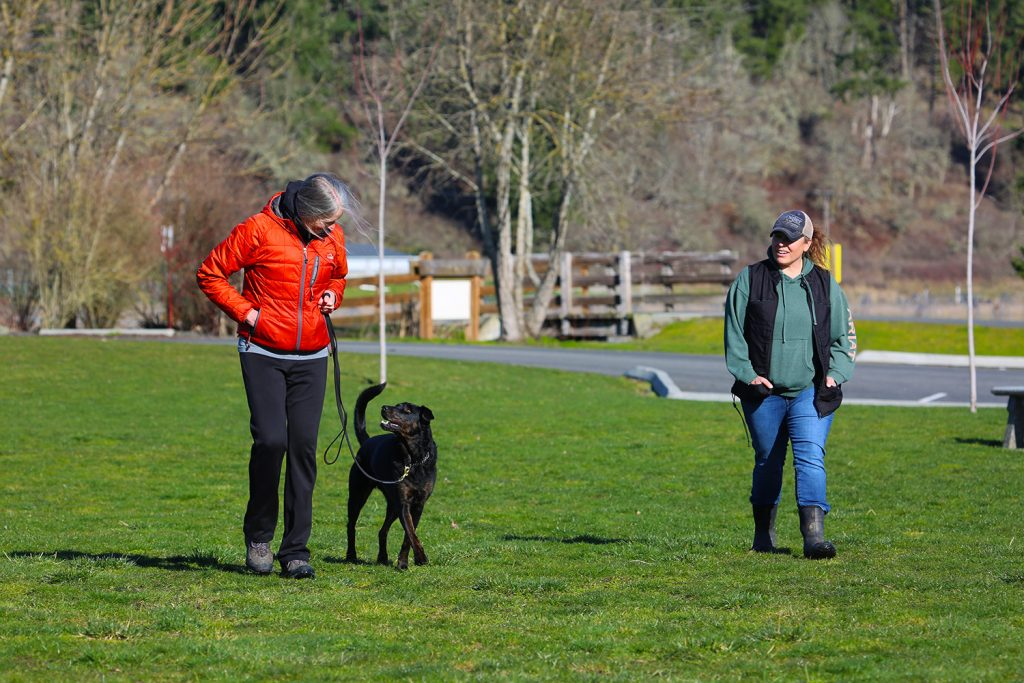 Dog owner walking dog with trainer coaching
